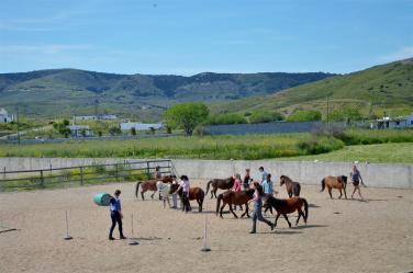 Kids training session on Sunday